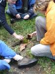 teambuilding met natuurbeleving