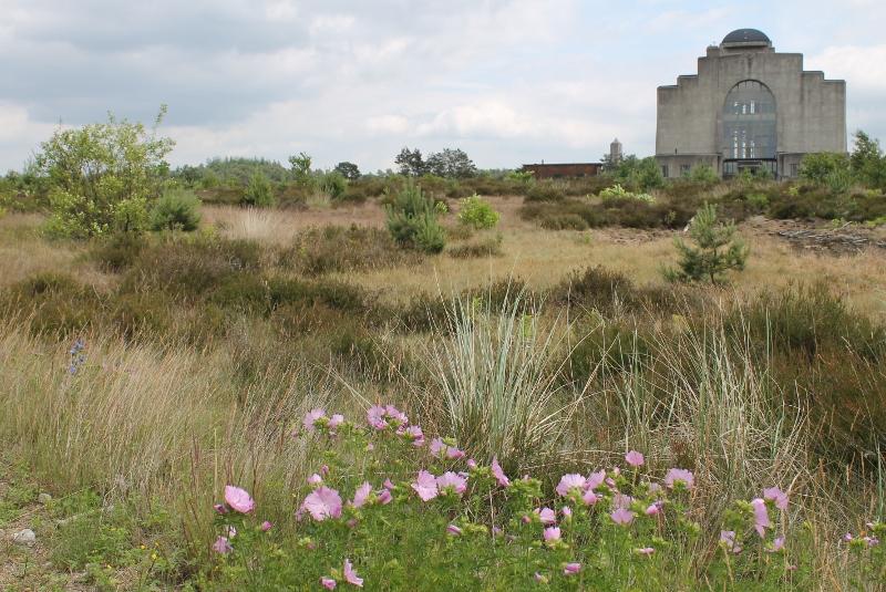 Filosofische Citaten Natuur : Filosofische wandelingen radio kootwijk samen leren