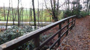 ontspannen met verzorgde filosofische natuur wandeling