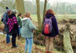 Filosofische wandeling in het beekdal